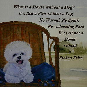 BICHON-FRISE-Dog-HARDBOARD-PLAQUE-TILE-OIL-PAINTING-PRINT-SANDRA-COEN-ARTIST