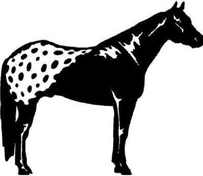 ARABIAN HORSE SHOW decal Horses sticker for car truck trailer window ARABIANS