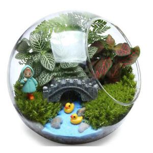 Round clear glass vase fish tank ball bowl flower planter for Vase aquarium rond