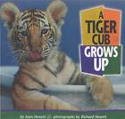 A Tiger Cub Grows Up by Richard Hewett, Joan Hewett (Paperback, 2001)