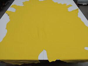 Das Bild Wird Geladen Lederhaut Polsterleder Rindleder Semi Anilin Leder  Fb Sonnengelb