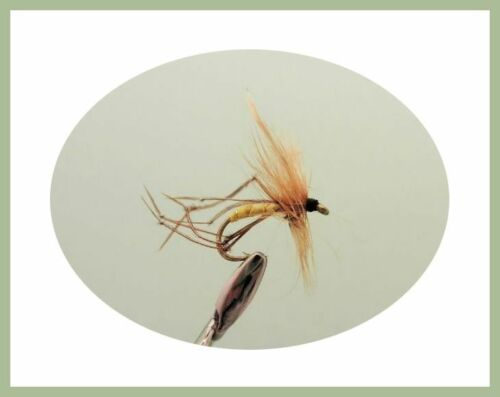 Autumn Collection SF3ZB Trout Fishing flies 40 per Pack all named varieties