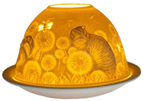 Windlicht Porzellan DL 0092 HAUSKATZEN Dome Light 12 x 12 x 8 cm weiss
