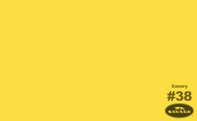 53 in x 36 ft #38 Canary Savage Seamless Background Paper