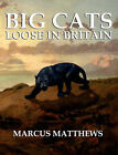Big Cats Loose in Britain by Marcus Matthews (Paperback, 2007)