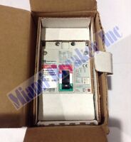 Egb3060ffg Cutler Hammer Circuit Breaker 3 Pole 60 Amp 480v (new In Box)