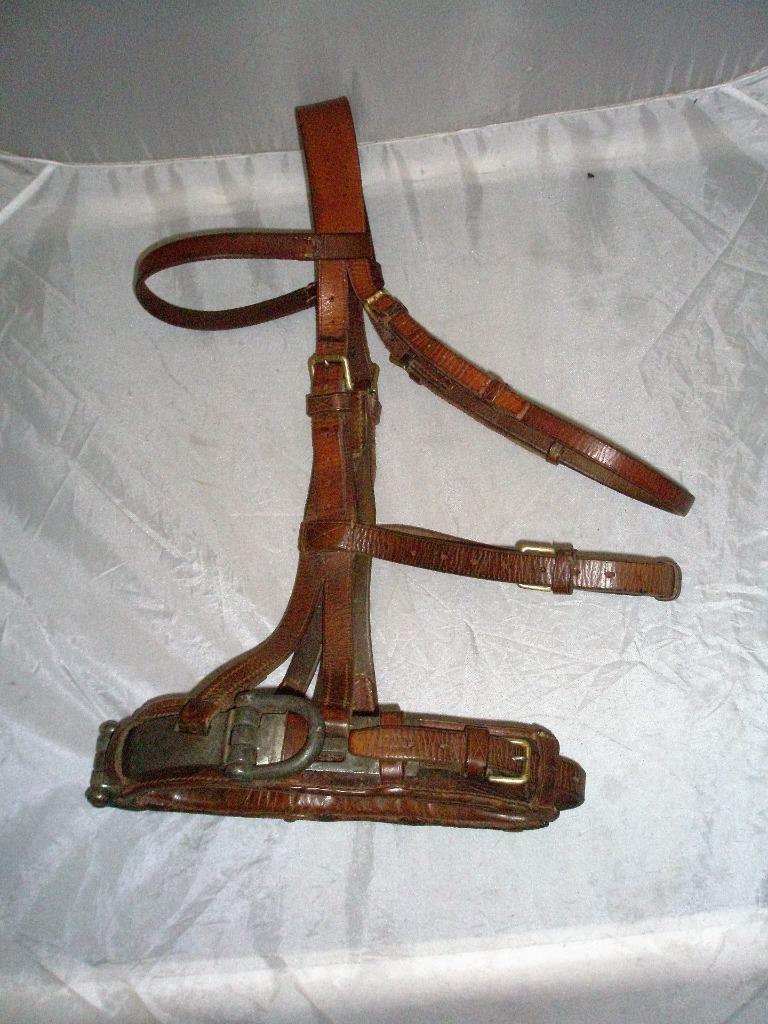 Vintage Mechas Lambourn COB  estocada cavesson Cuero Tostado-Latón & Acero Accesorios   Precio por piso