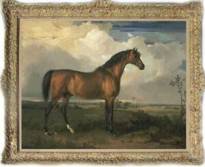 """Old Master-Art Antique Oil Painting animal Portrait horse on canvas 30""""x40"""""""