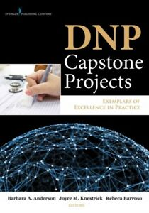 DNP-Capstone-Projects-Exemplars-of-Excellence-in-Practice-Paperback-by-And