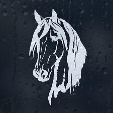 Horse Head Car Laptop Phone Wall Furniture Decal Vinyl Sticker Colour Choice