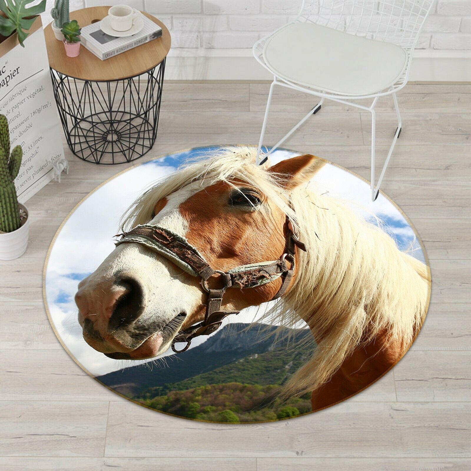 3D Mountain Horse C08 Animal Non Slip Rug Mat Elegant Photo Carpet Zoe