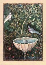 Pompeji Italien Brunnen Vogel Fresko Faksimile 1 auf Büttenpapier