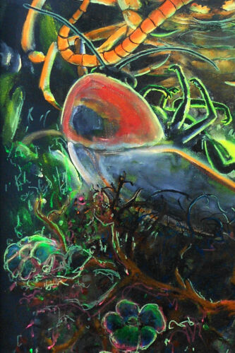 Limited Signed Print firefly art /'Centipede /& Lightning Bug/' by Jessie Edsall