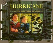 Hurricane by Wiesner, David
