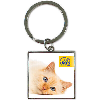 Ginger Cat Blue Eyes  73002 NEW Cats Protection Keyring