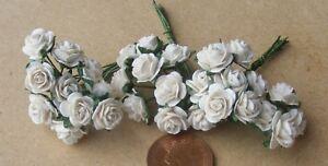1-12-Escala-3-Monos-30-Flores-de-Crema-Papel-Rosas-Tumdee-Casa-Munecas-Jardin