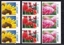 Moderna corrispondenza privata citipost 3er ZDR. fiori da MH