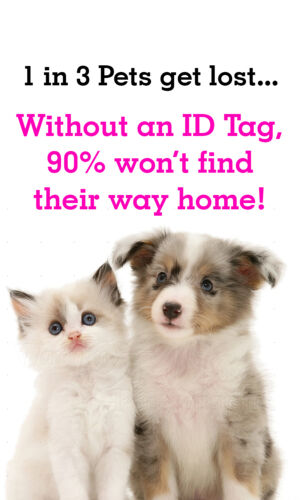 Disney Bambi Thumper Pet Id Tag for Dogs /& Cats Personalized w// Name /& Number