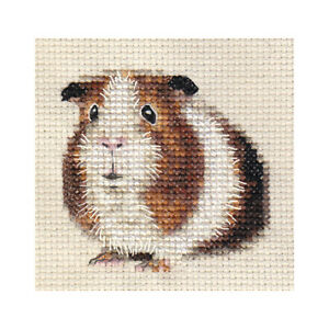 Tri Colour Guinea Pig Cavy Full Counted Cross Stitch Kit All