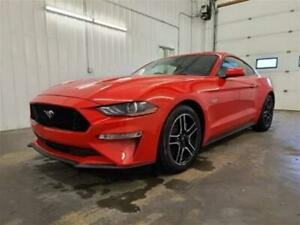 2019 Ford Mustang GT Coupe GT