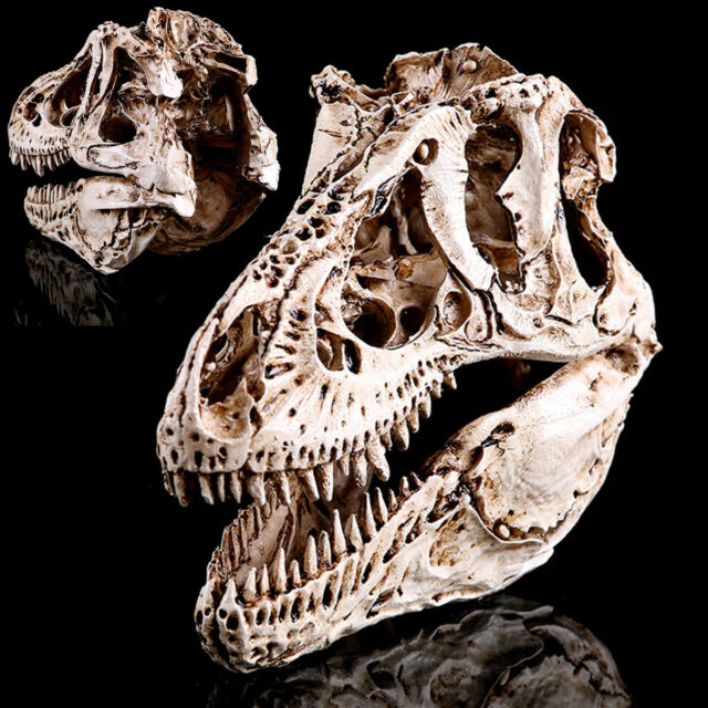 Tyrannosaurus T-Rex Skull Resin Fossil Model, Dinosaur Collectibles Replica Craf