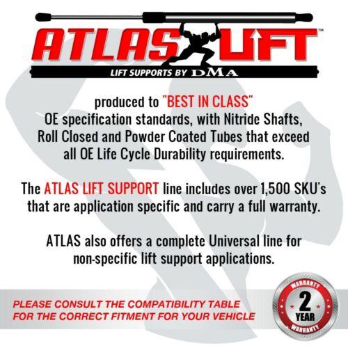 Atlas Hood Lift Support Shock for 10-15 Chevrolet Camaro