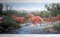 Wild Horses Wallpaper Border - Horse Crossing Stream, New, Free Shipping on sale