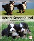 Berner Sennenhund von Anita Schneider-Weissbaum (2012, Gebundene Ausgabe)