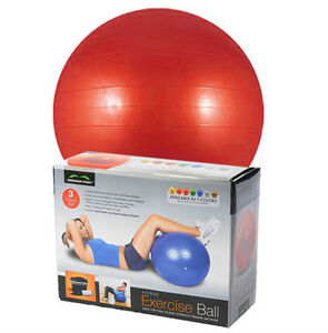 65CM-RED-GYM-EXERCISE-BALL-Anti-Burst-YOGA-FITNESS-AEROBIC-BALL-CORE