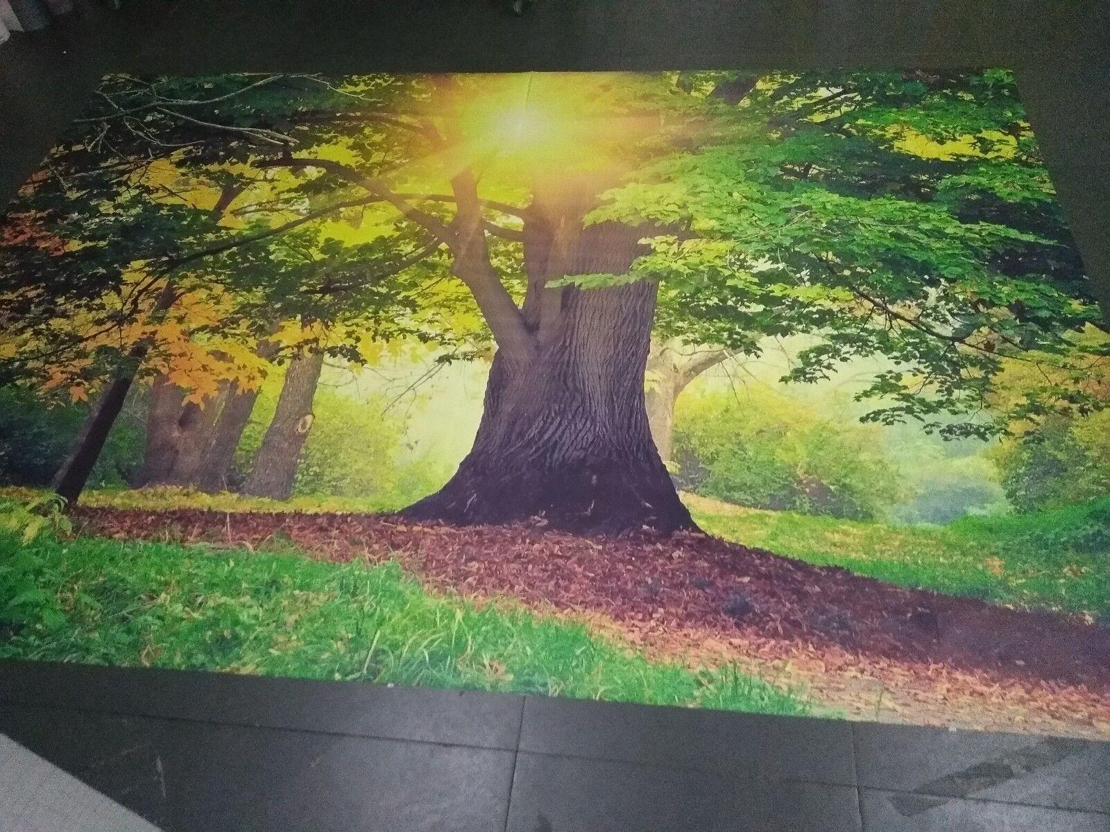 3D outdoor Big tree sun Wall Paper wall Print Print Print Decal Wall Deco Indoor wall Mural 71f666