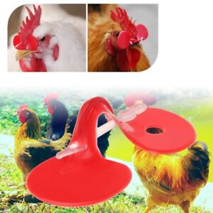 Details about 50 Set/Bag Chicken Glasses Pheasant Farm Rooster Anti Pecking  Accessory Supplies