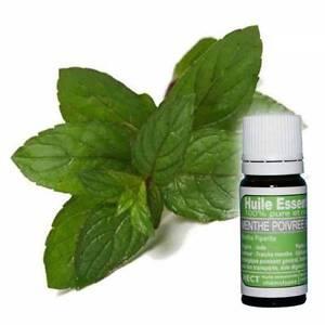Huile essentielle de Menthe Poivrée pure et naturelle 10 ml certifiée HECT