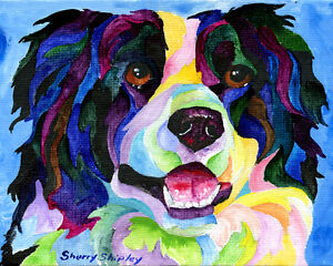 BORDER-COLLIE-8X10-DOG-Colorful-Print-from-Artist-Sherry-Shipley
