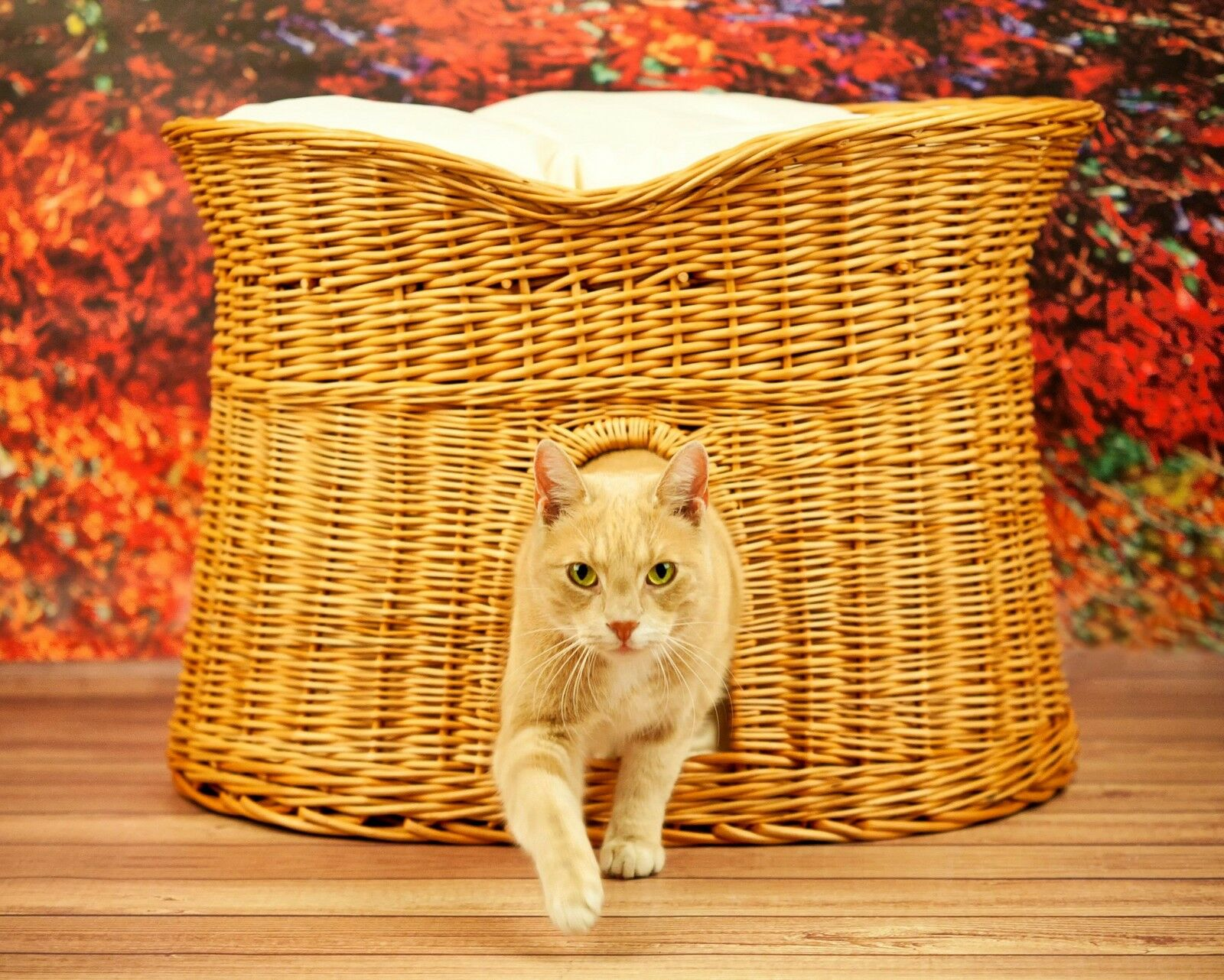 Superior Wicker Cat Tower Bed Basket House willow 2 Größes + cushions