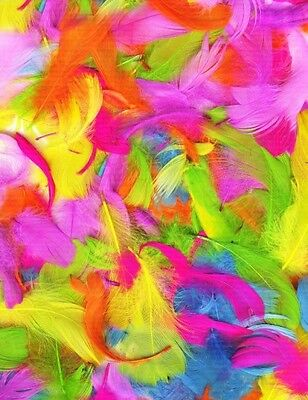 Pack of Assorted Feathers in Bright Neon Colours - Easter Bonnets Crafts etc New