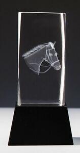 Kristallglas 3D-Lasermotiv PFERDEFREUND m.Sockelgravur -in Box- nur 27,95 EUR