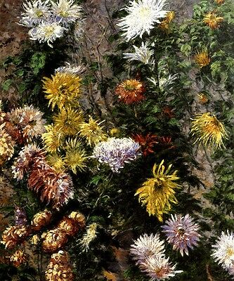 WHITE AND YELLOW CHRYSANTHEMUMS GARDEN FLOWER PAINTING BY CAILLEBOTTE REPRO