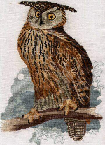 Eagle Owl counted cross stitch kit or chart 14s aida