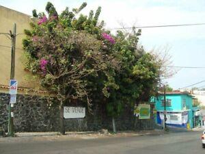 Casa Sola como Terreno en esquina para Franquicias en Col. La Pradera
