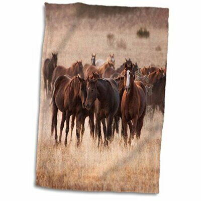 Herd of Black Horses Galloping Snow Hanging Finger Tip Powder Room Bath Towel