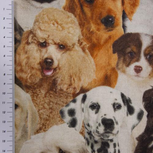 Dekostoff Halbpanama Baumwolle Hunde Welpen braun weiß schwarz 1,40m Breite