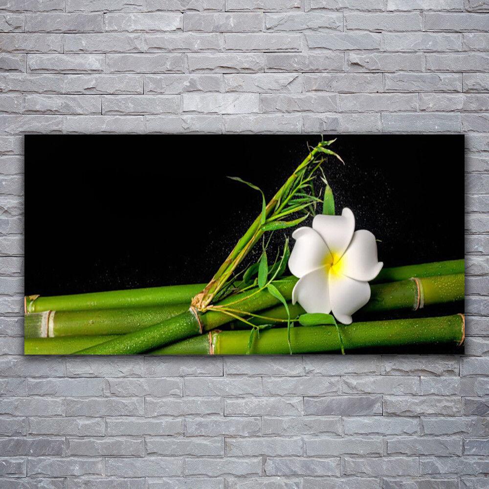 Glasbilder Wandbild Druck auf Glas 120x60 Bambus Blaume Pflanzen