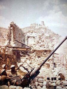7x5-Gloss-Photo-ww4583-World-War-2-II-WW2-Artillery-30