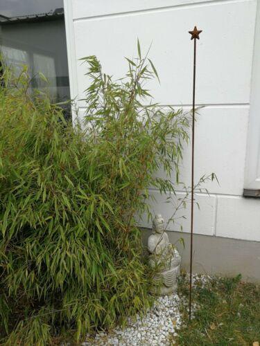 Edelrost Gartenstecker Rost Gartenfigure Rost GartenStern H180* 7cm Metall 10mm