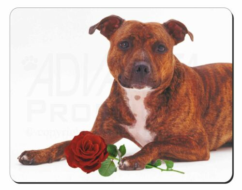 Staffie with Red Rose Computer Mouse Mat Christmas Gift Idea, ADSBT6RM