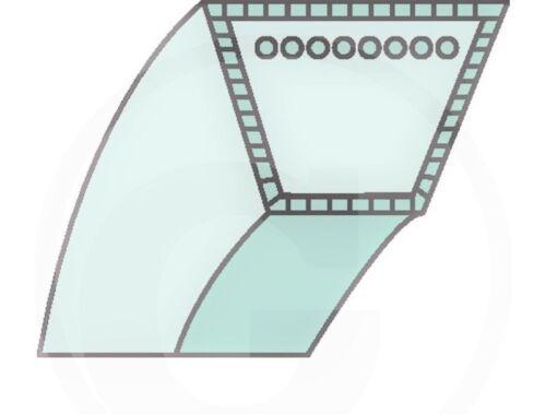 407160 Courroie trapézoïdale-Jeu Pour ALKO poutres Maher BM 660 875 407127 870 407046