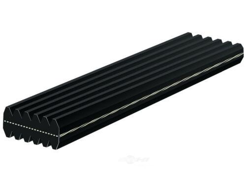 Serpentine Belt-Dual Sided ACDelco Pro 5DK610
