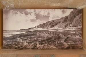 Beaches-Canvas-wall-Art