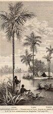 TCHARA SUR LE TANA RIVIERE RIVER ZANGUEBAR MOZAMBIQUE IMAGE 1890 PRINT