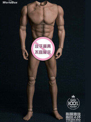 *US STOCK* WorldBox Strong Durable 1//6 Narrow Shoulder Male Figure Body AT011